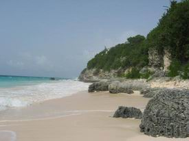 resize-of-coral-beach